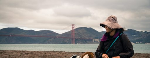 #Day 2 – If you're going to San Francisco