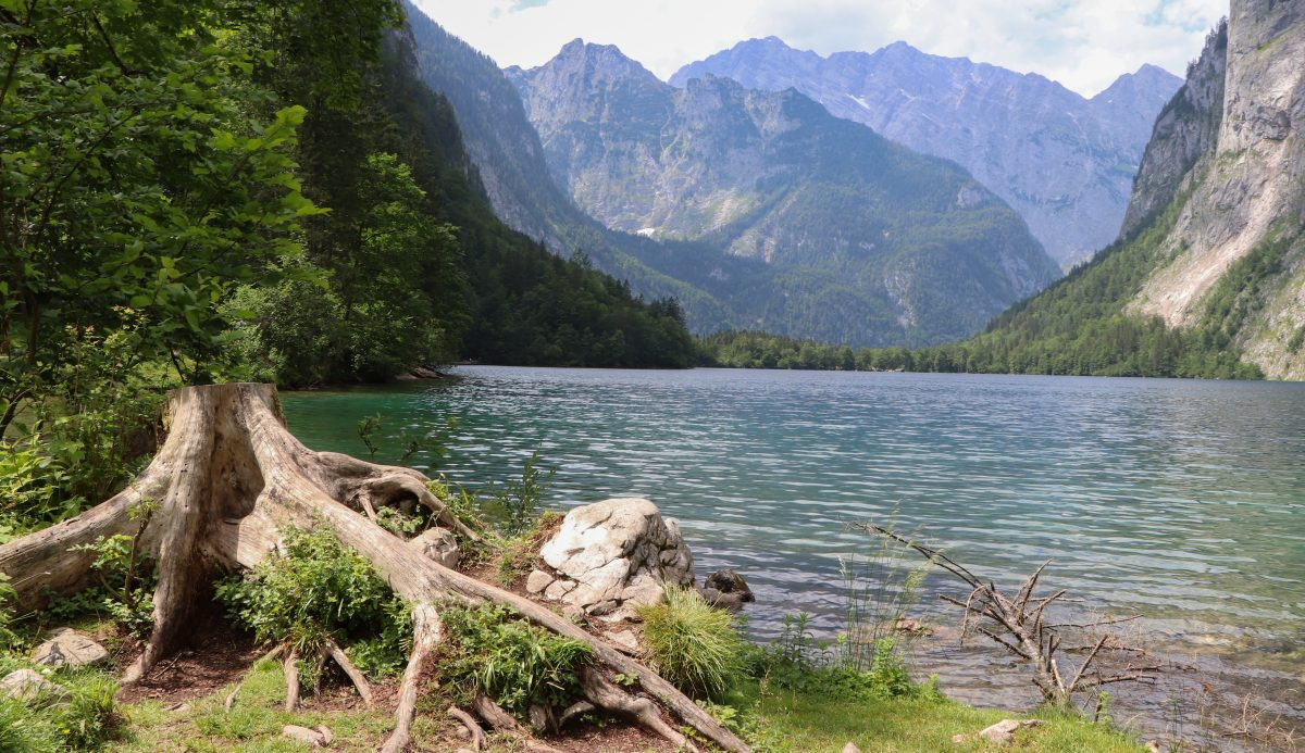 Obersee 3