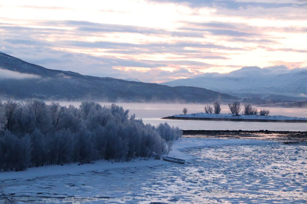 Tromso, Senja, Noruega, Consulta, Consulta do Viajante, neve, auroras