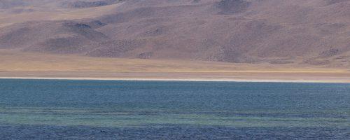 #Dia 102 – S.Pedro de Atacama [Lagunas Altiplanicas]