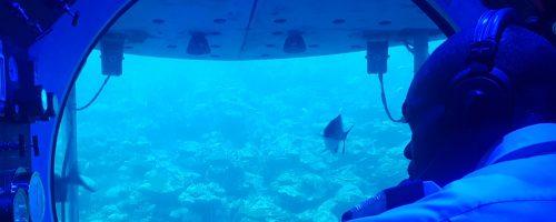 Um passeio de submarino pelos Barbados